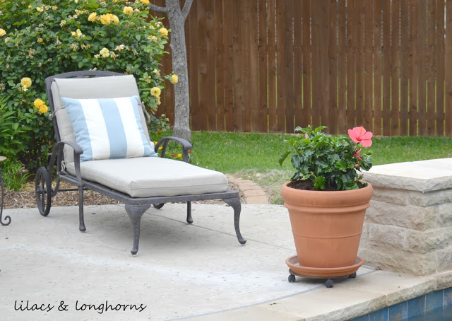 Large Flower Pots Lowes: How To Plant In Large Pots {Without Spending A Fortune