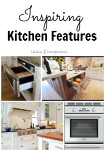 inspiring kitchen features