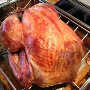 Thanksgiving turkey_2