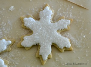 sugar cut out cookie