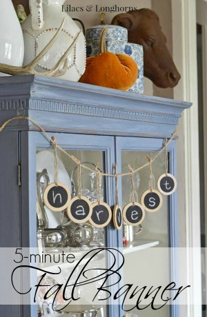 5-minute fall banner / Lilacs and Longhorns