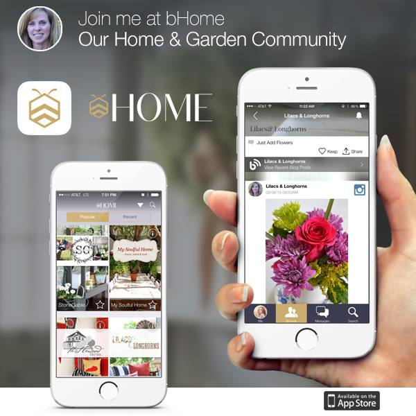 Lilacs & Longhorns on the bHome app